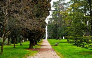 Aspettando la primavera di Marilena Scalzitti (Novara)